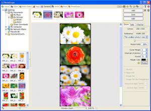 programmi collage